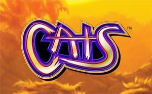 Cats casino game