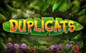 duplicats slot