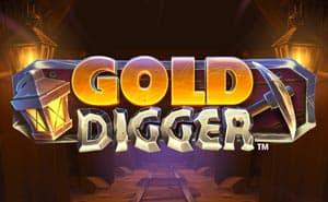 gold digger casino game