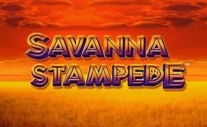 savanna stampede slot